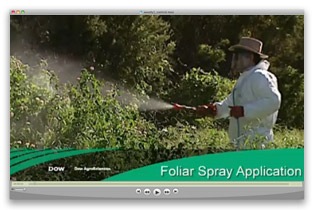 Foliar Spray Application