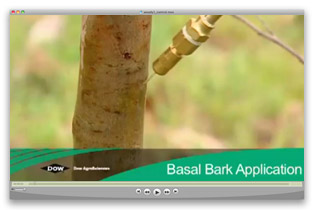 Basal Bark Application